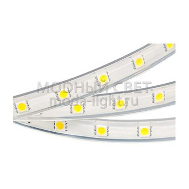 Лента ARL-W5060PG-54-220V White 6000K (540 LED, 10m)